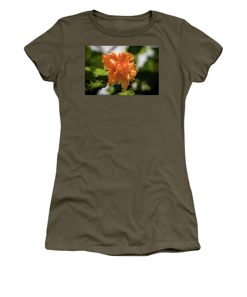 Allan Gardens Orange Women's T-Shirt