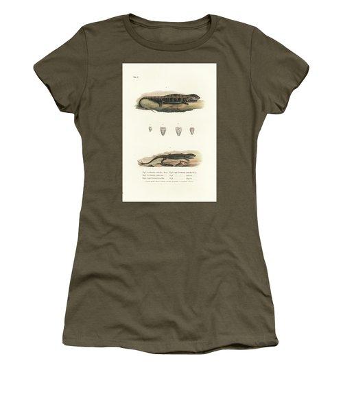 Alligator Lizards From Mexico Women's T-Shirt