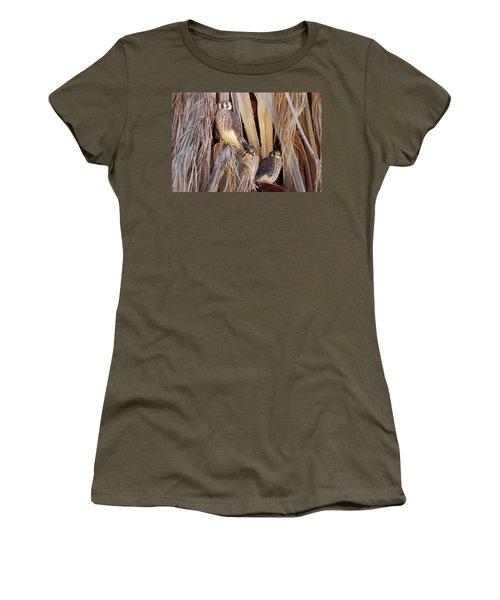 American Kestrels Women's T-Shirt (Junior Cut) by Dan Redmon