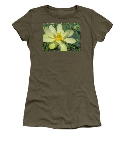 American Lotus Women's T-Shirt