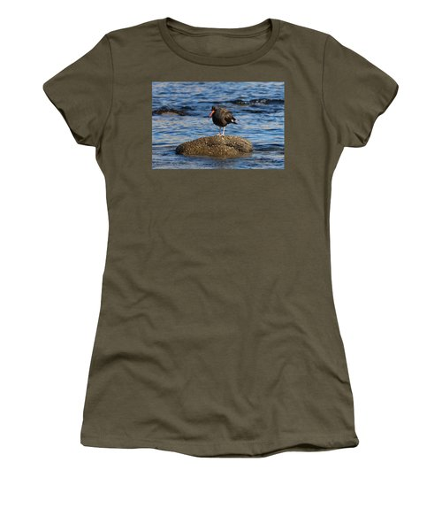 American Oystercatcher - 2 Women's T-Shirt (Athletic Fit)