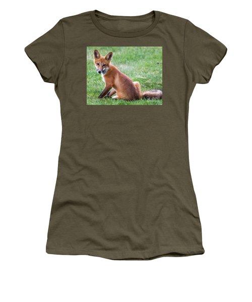 American Red Fox  Women's T-Shirt