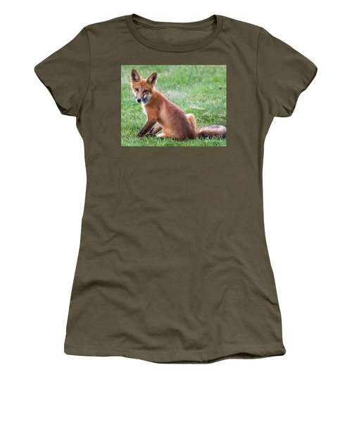 American Red Fox  Women's T-Shirt