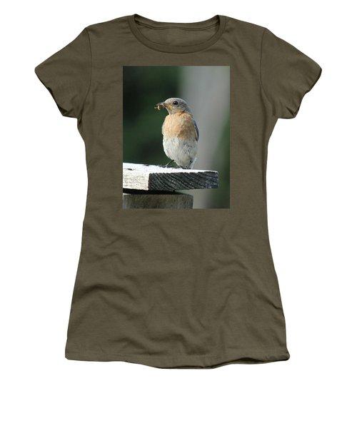 American Robin Women's T-Shirt