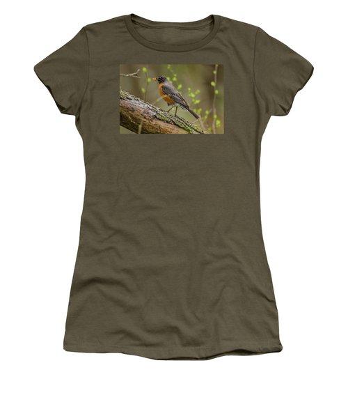 American Robin Women's T-Shirt (Junior Cut) by Ray Congrove