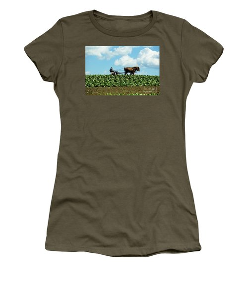 Amish Farmer With Horses In Tobacco Field Women's T-Shirt