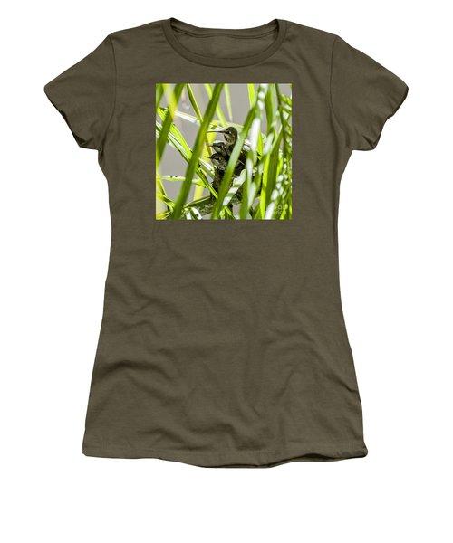 Women's T-Shirt (Junior Cut) featuring the photograph Anna Hummer On Nest by Daniel Hebard