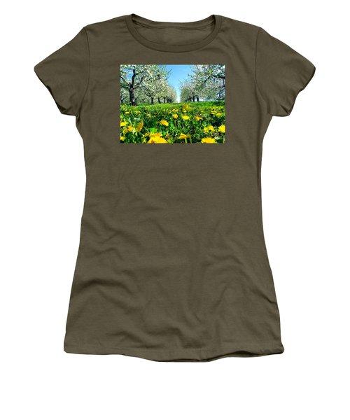 Apple Orchard, Nova Scotia, Annapolis Valley Women's T-Shirt