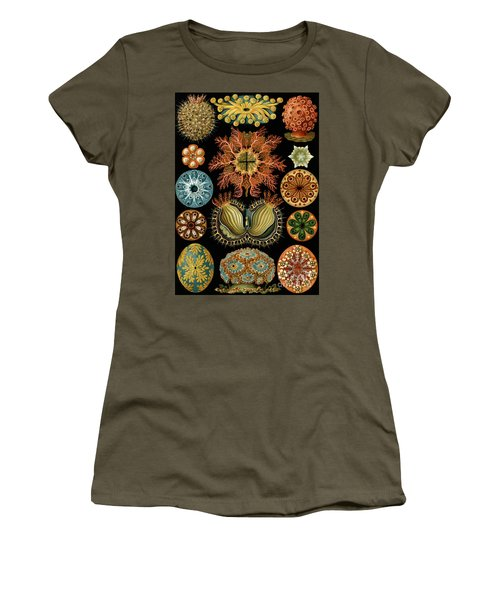 Ascidiae Women's T-Shirt
