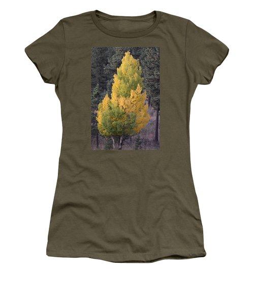 Aspen Tree Fall Colors Co Women's T-Shirt