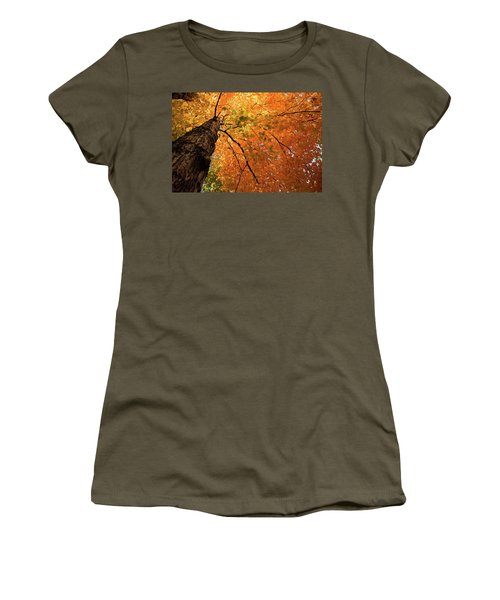 Autumn Canopy In Maine Women's T-Shirt