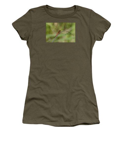 Women's T-Shirt (Junior Cut) featuring the photograph Autumn Meadowhawk by Randy Bodkins