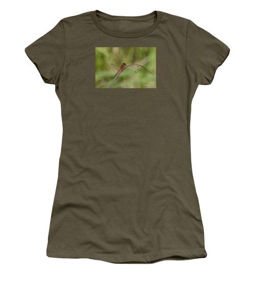 Autumn Meadowhawk Women's T-Shirt (Athletic Fit)
