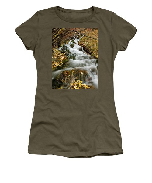 Autumn Waterfall Women's T-Shirt