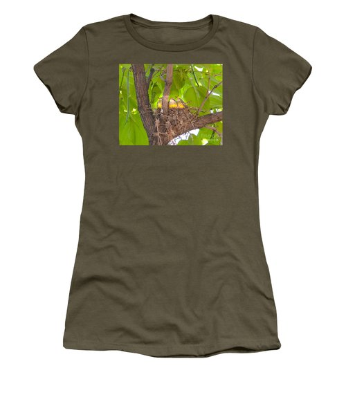 Baby Birds Waiting For Mom Women's T-Shirt
