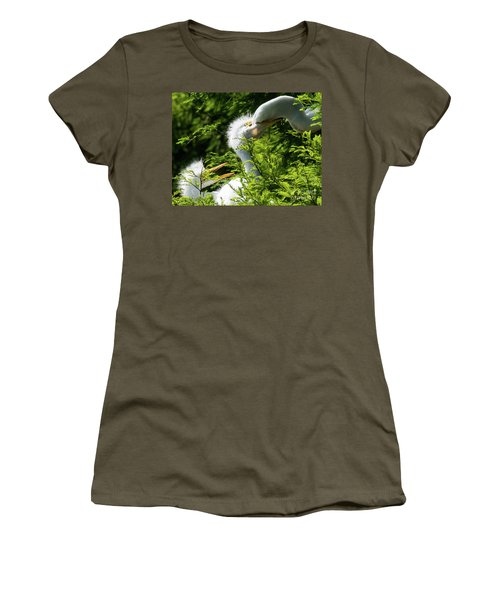 Baby Egrets Being Feed Women's T-Shirt