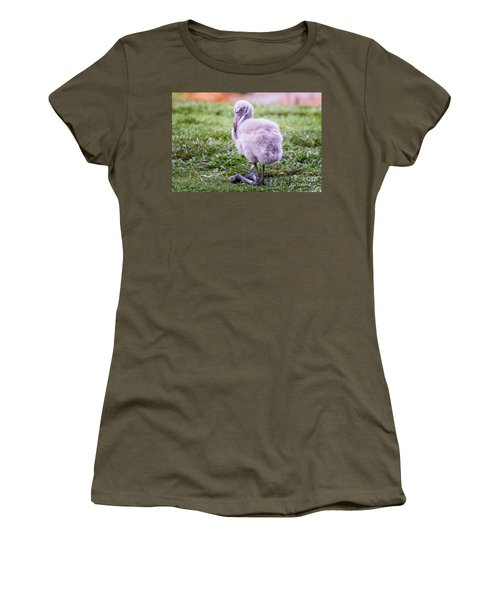 Baby Flamingo Sitting Women's T-Shirt (Junior Cut) by Stephanie Hayes