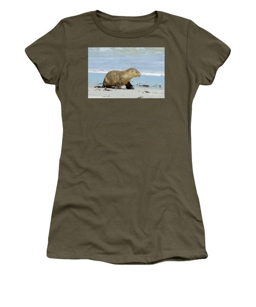 Baby Sea Lion On Seals Bay Women's T-Shirt (Athletic Fit)