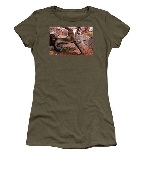 Ballestas Island Fur Seals Women's T-Shirt (Junior Cut) by Aidan Moran