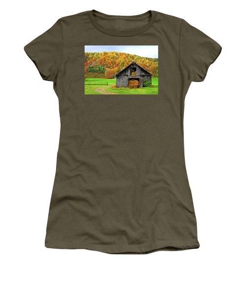 Barntifull Women's T-Shirt (Junior Cut) by Dale R Carlson