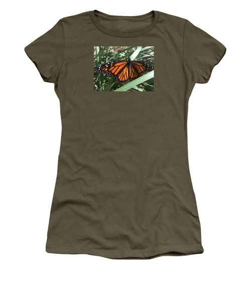 Women's T-Shirt (Junior Cut) featuring the photograph Beautiful Fall Butterfly  by Paula Brown