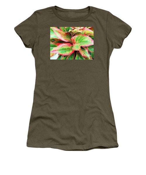 Women's T-Shirt (Junior Cut) featuring the photograph Beautiful Red Aglaonema by Ray Shrewsberry