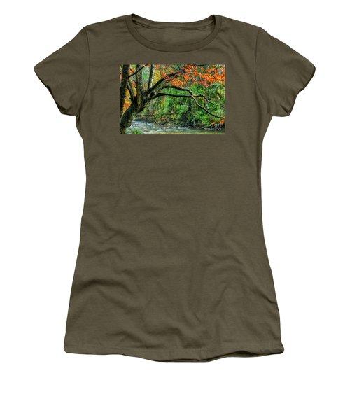 Beech Tree And Swinging Bridge Women's T-Shirt