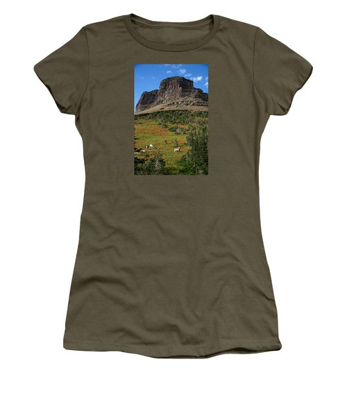 Big Horn Sheep Women's T-Shirt (Junior Cut) by Lawrence Boothby