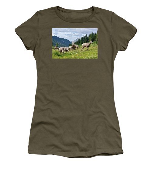 Big Horn Sheep Women's T-Shirt