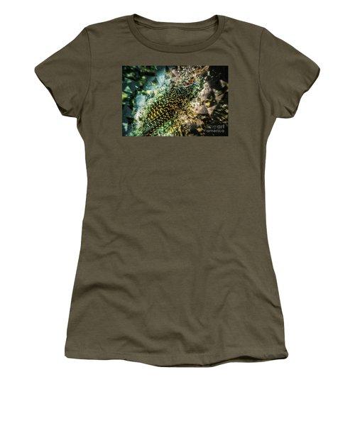 Bird Meets Glass Women's T-Shirt