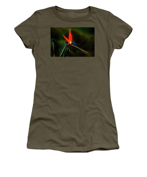 Women's T-Shirt (Junior Cut) featuring the photograph Bird Of Pardise by Joseph Hollingsworth