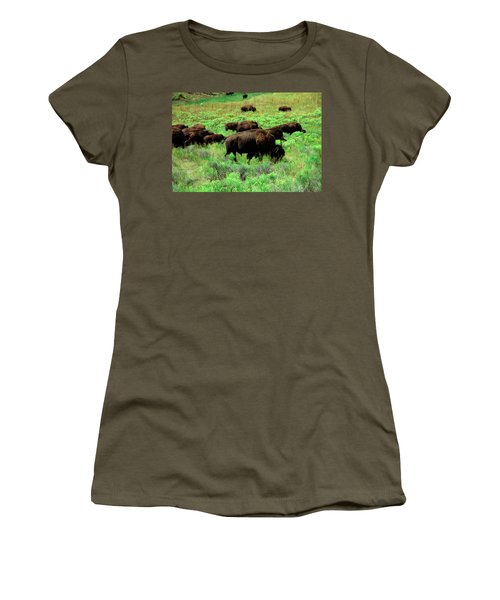 Bison2 Women's T-Shirt