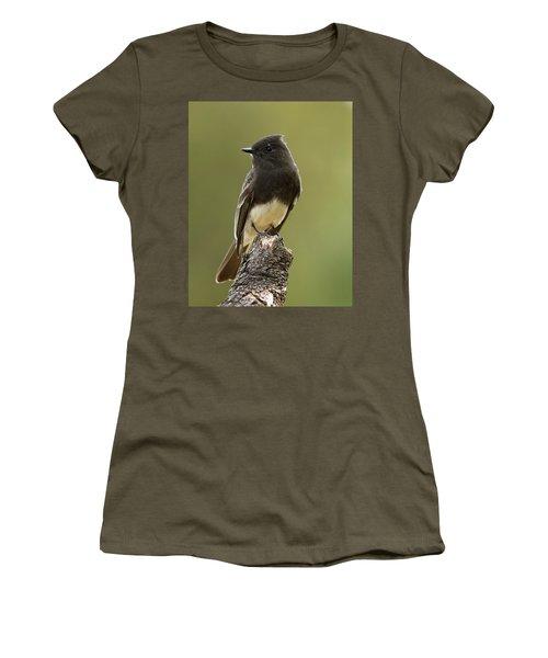 Black Phoebe Women's T-Shirt (Athletic Fit)