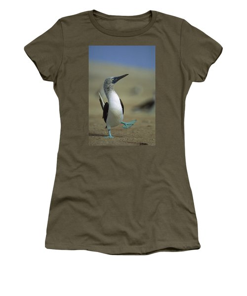 Women's T-Shirt featuring the photograph Blue-footed Booby Sula Nebouxii by Tui De Roy