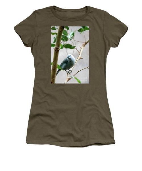 Blue-grey Tanager Women's T-Shirt (Athletic Fit)