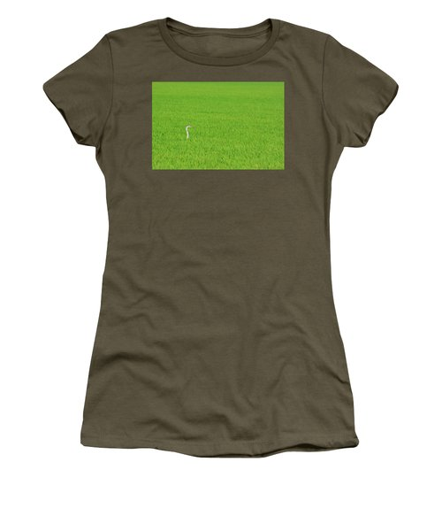 Blue Heron In Field Women's T-Shirt (Athletic Fit)