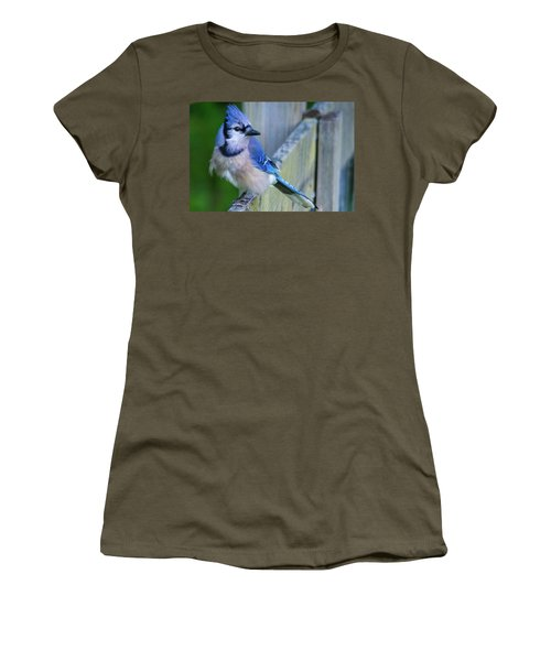 Blue Jay Fluffed Women's T-Shirt