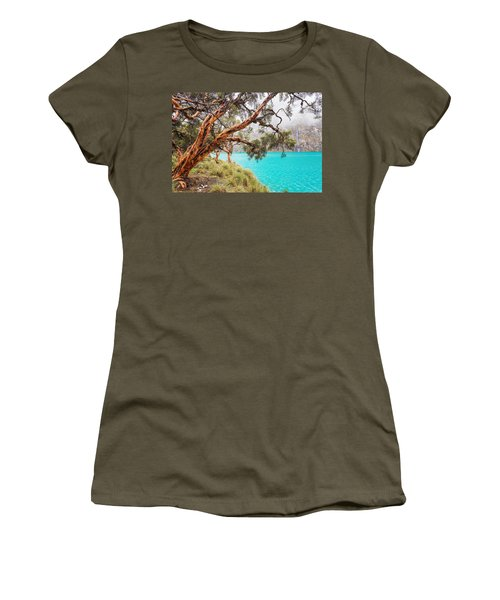 Blue Lake In The Cordillera Blanca Women's T-Shirt