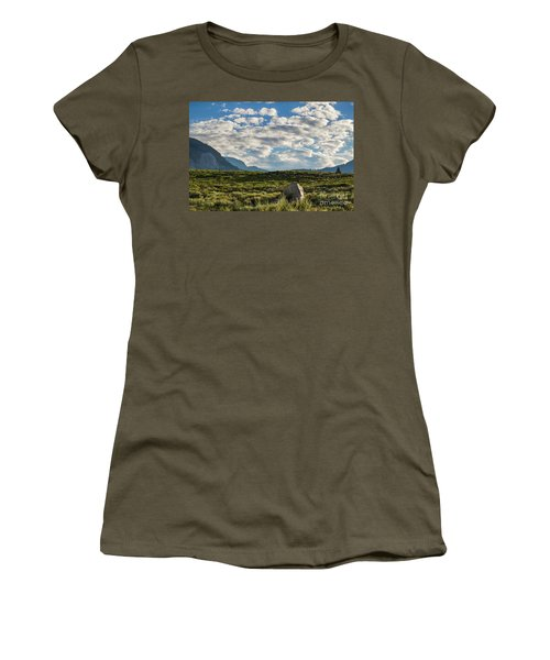 Blue Sky Monmouth  Women's T-Shirt (Athletic Fit)