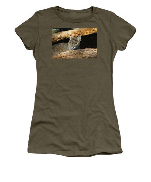 Bobcat Hiding In A Log Women's T-Shirt