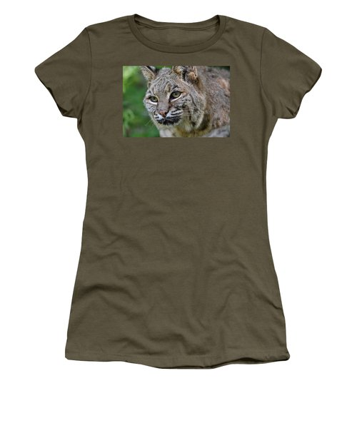 Bobcat In The Trees Women's T-Shirt