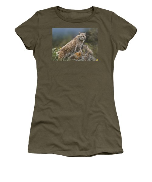Women's T-Shirt featuring the photograph Bobcat Mother And Kittens North America by Tim Fitzharris