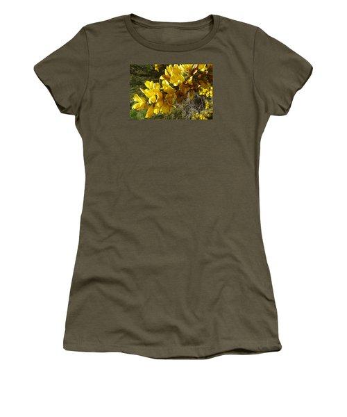 Broom In Bloom Women's T-Shirt (Junior Cut) by Jean Bernard Roussilhe