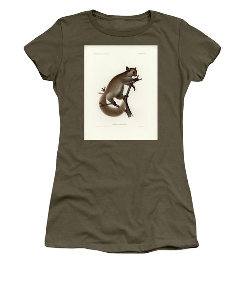 Brown Greater Galago Or Thick-tailed Bushbaby Women's T-Shirt (Junior Cut) by Hugo Troschel and J D L Franz Wagner