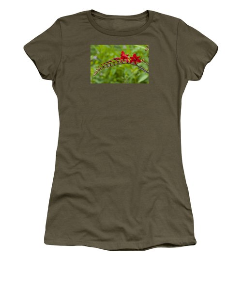 Budding Red Women's T-Shirt