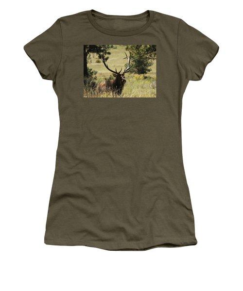 Bullelk1 Women's T-Shirt