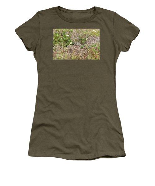 Burrowing Owl Outside His Home Women's T-Shirt