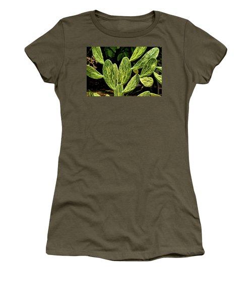 Women's T-Shirt featuring the photograph Cactus Patterns by Richard Goldman
