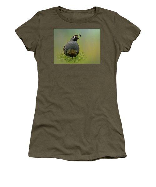 California Quail - 365-42 Women's T-Shirt (Junior Cut) by Inge Riis McDonald