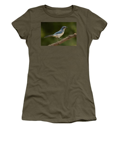 California Scrub Jay Women's T-Shirt (Athletic Fit)